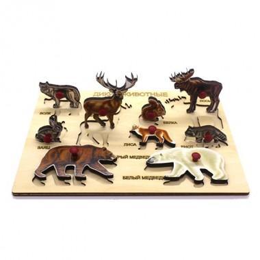 Рамка-вкладыш деревянная Дикие животные